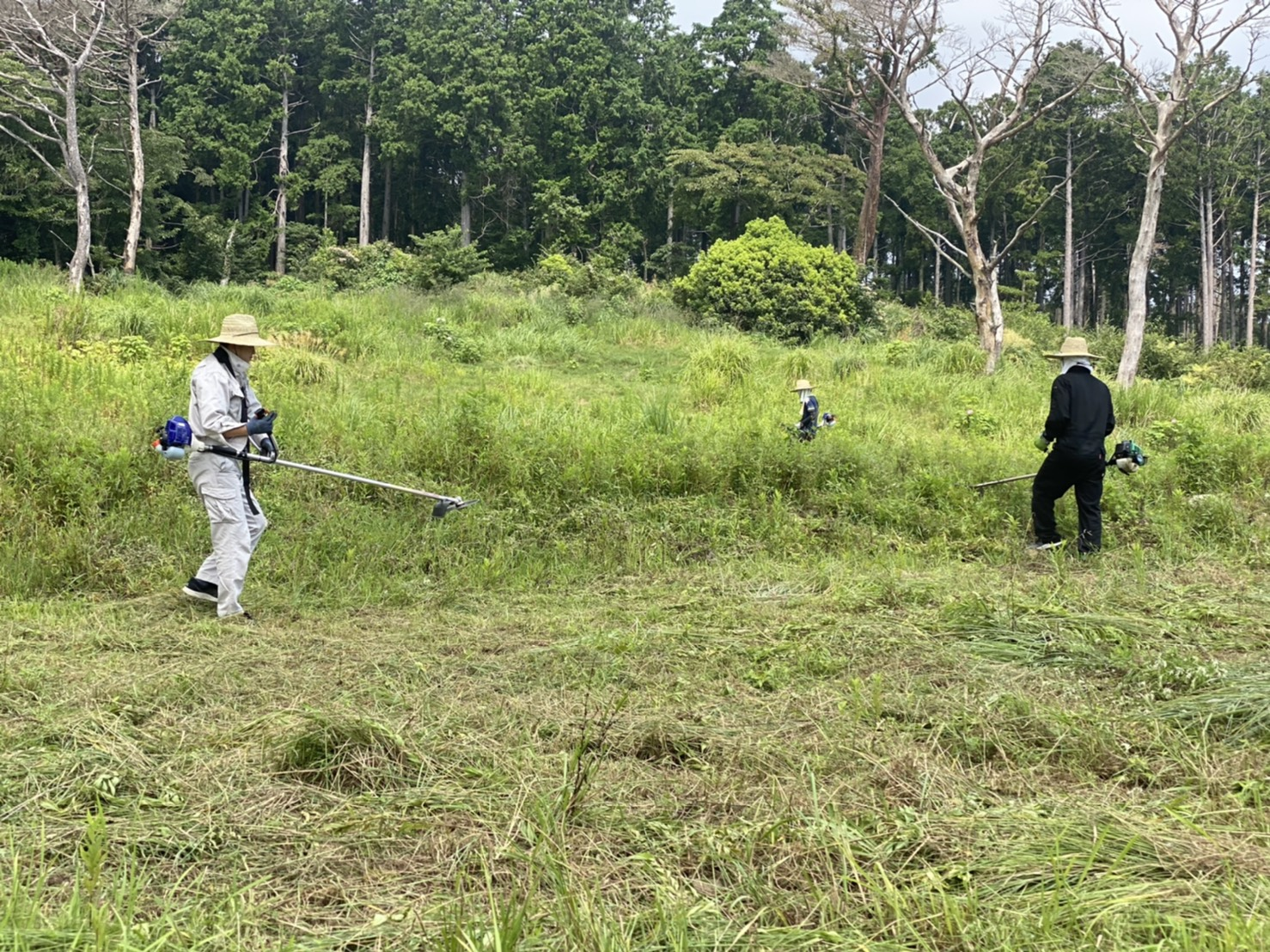 サポーターの方々と一緒にグラウンド予定地の草刈り作業